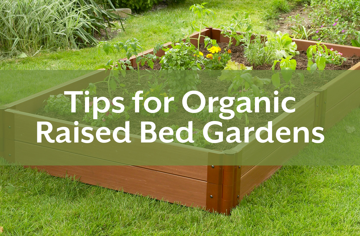 Tips For Organic Raised Bed Gardens Poly World Blog