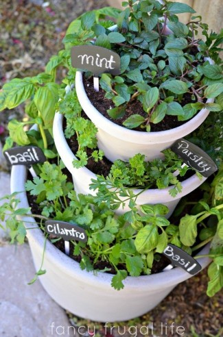 Stacked Potted Plant Herb Garden
