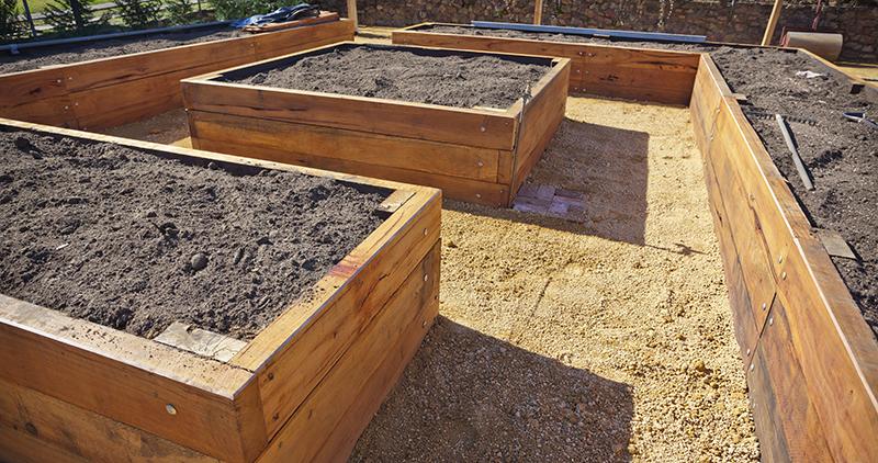 raised-garden-soil